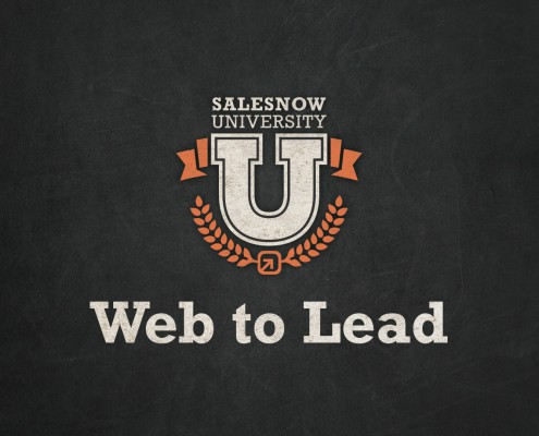 web to lead setup