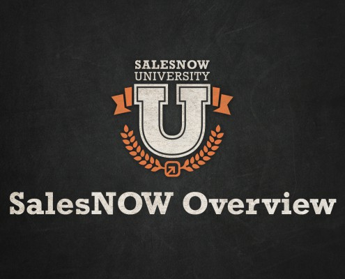 SalesNOW overview